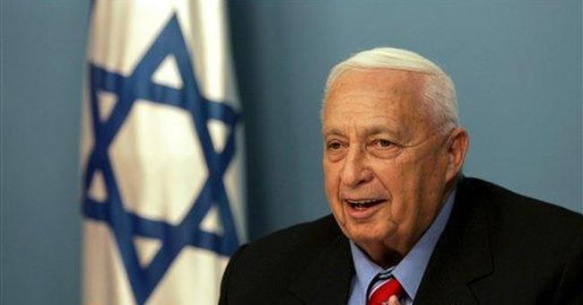Israel's Made-in-America Enemies