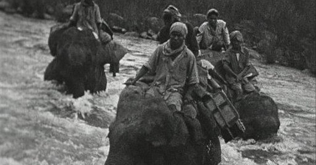 Films tell story of WWII elephant rescue in Burma