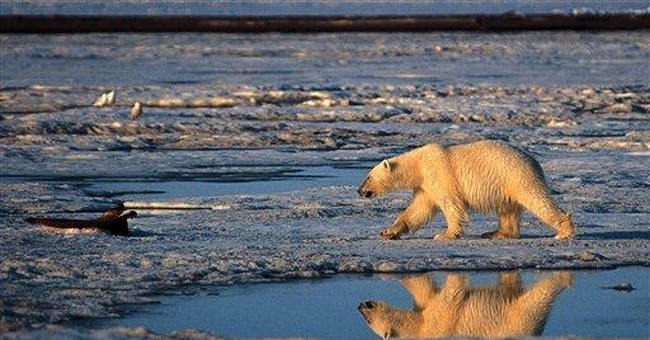 Cuddly Symbols Not Cooperating in Climate Panic
