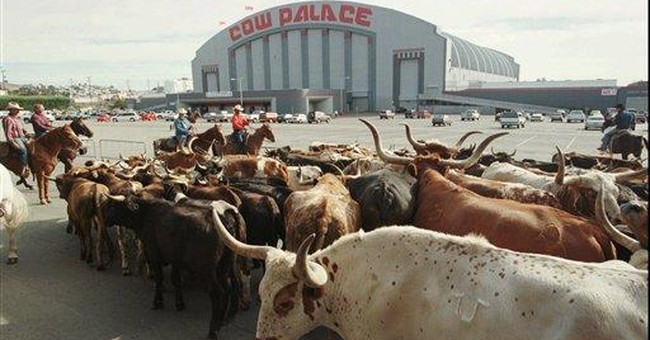 Cow Palace Board Votes To Uphold Gun Show Ban