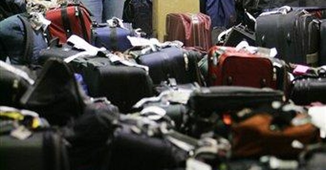 Gov't wants airlines to repay fee after losing bag