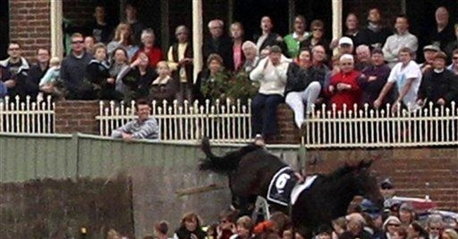 7 injured after horse jumps into Australian crowd