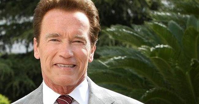 Schwarzenegger might 'Cry Macho' as film return