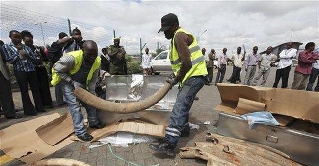 Kenyan police seize 1 ton of ivory at airport