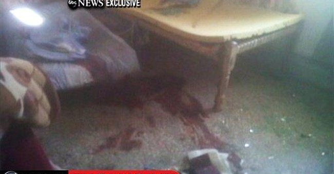 Al-Qaida vows revenge for Osama bin Laden's death