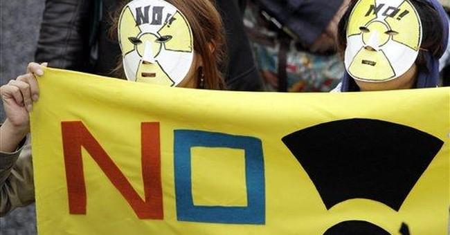 Japan utility delays decision on halting reactors