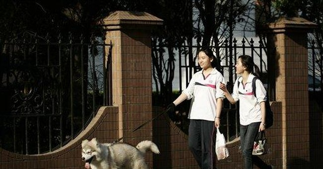 Shanghai's 1-dog limit causes anguish for owners
