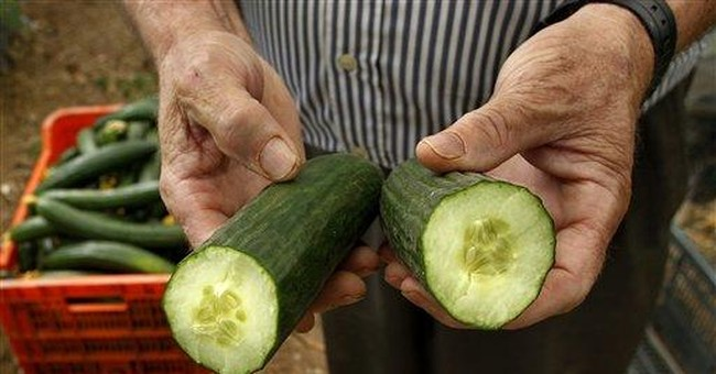 Spanish produce exports paralyzed by bacteria fear