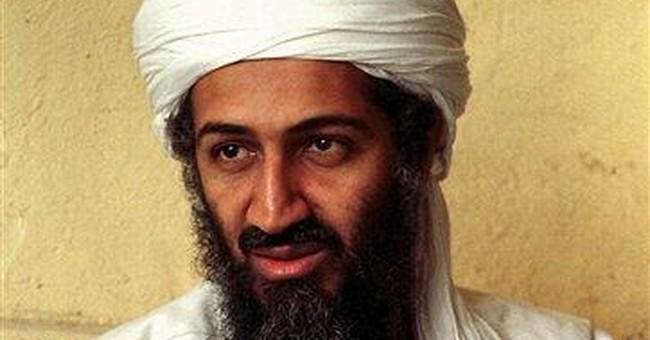 Linchpin in hunt for bin Laden back with al-Qaida