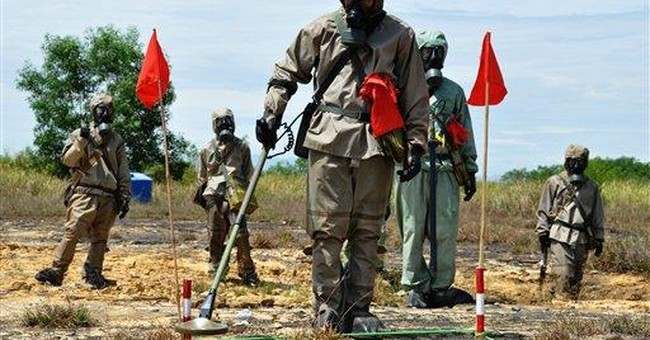 Vietnam starts joint Agent Orange cleanup with US