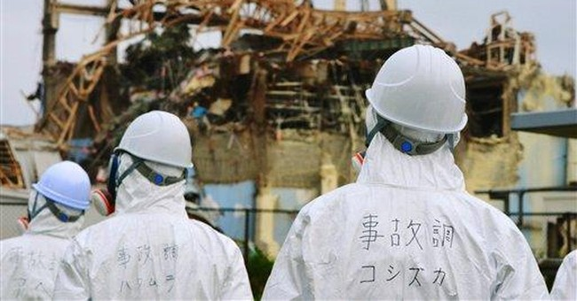 Water cleanup system shut down at Japan nuke plant