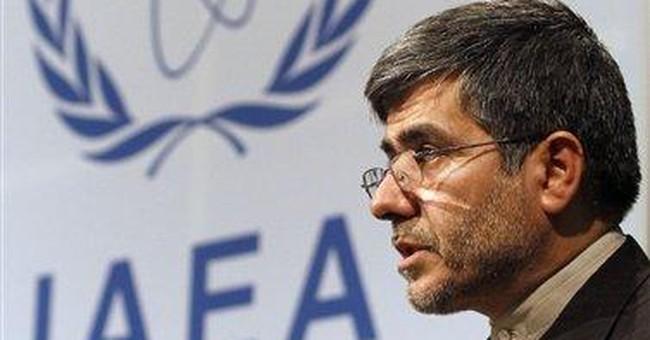 Iran's nuke chief critiques IAEA