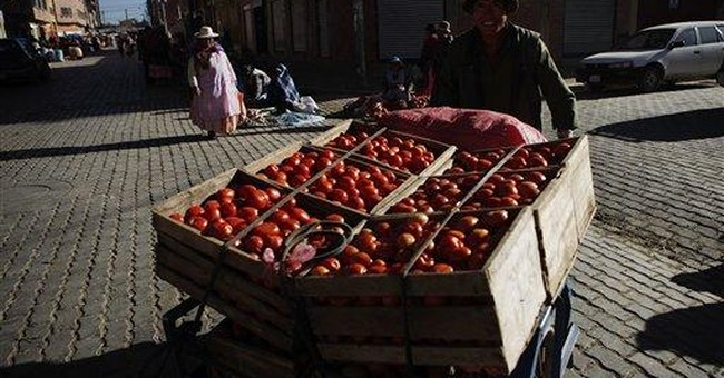 Climate, government controls hit Bolivia's farmers
