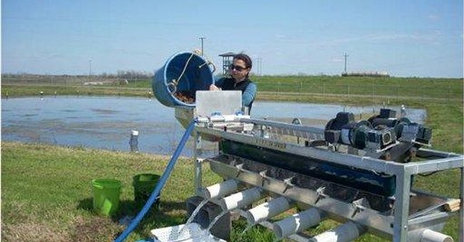 La. researcher uses light to grow bigger crawfish