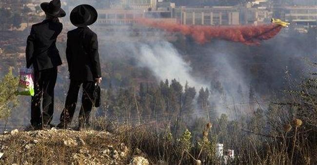 Fire forces evacuation of Israel's Yad Vashem