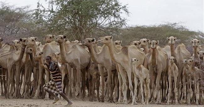 Australia minister pleads for food aid for Somalia