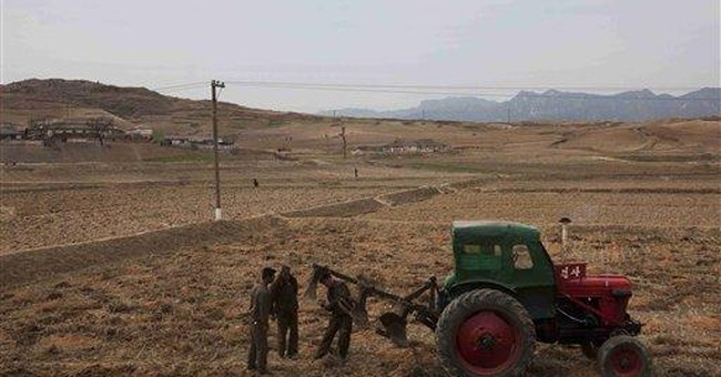 NKorea food shortage worst in years despite farms