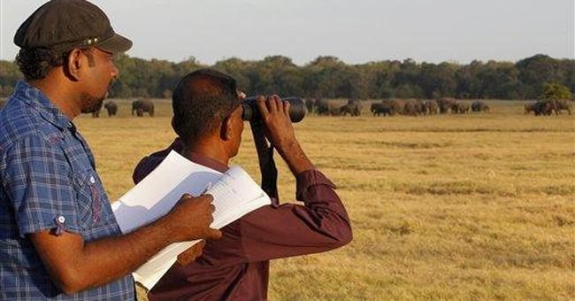 Sri Lanka begins 1st countrywide elephant census