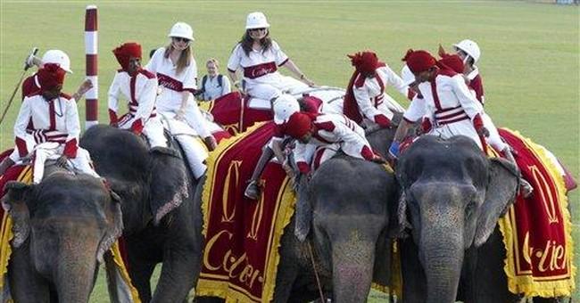 India elephant polo match canceled amid protest