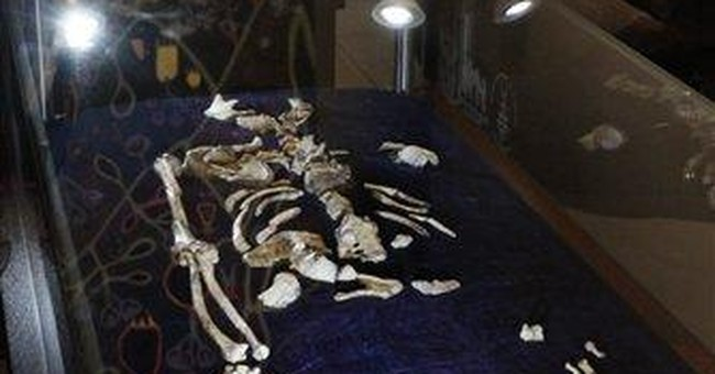 'Game-changer' in evolution from S. African bones