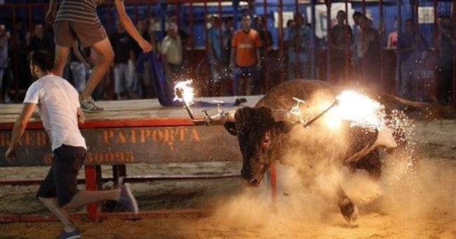 Spain killer bull named 'Mouse' wins fame, infamy