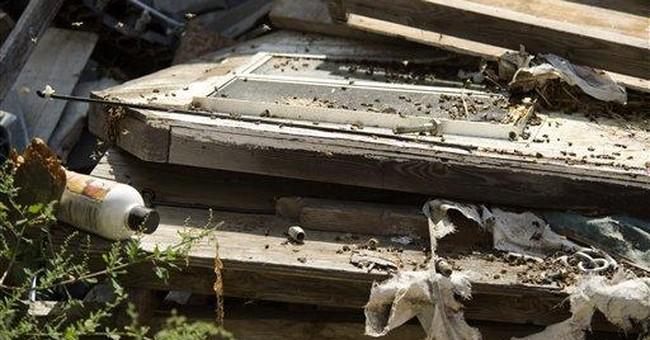 Angry bees sting 4 men at California storage yard