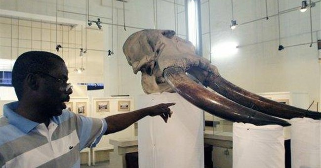 Looters plunder $8.5M from Ivory Coast museum