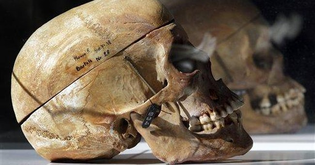 German museum returning Namibian skulls