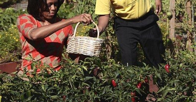Kids help White House harvest; Bo just says no