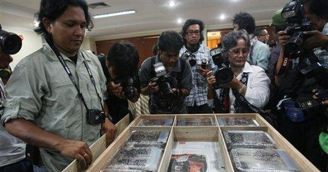 Smuggled pig-nosed turtles returned to Indonesia