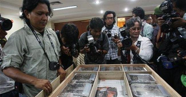 Smuggled pig-nosed turtles returned to Indonesia