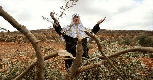 UN urges Israel to stop settler attacks