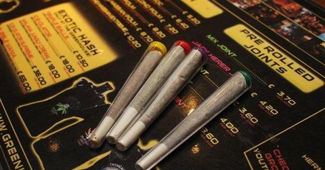Dutch classify high-potency marijuana as hard drug