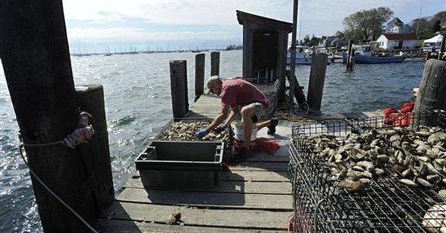 Connecticut's oystermen seek help after Irene