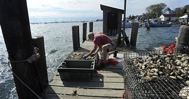 Connecticut's oystermen seek help after Irene