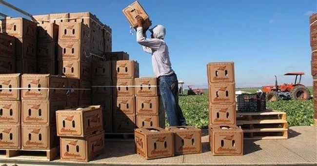 Listeria outbreak devastates Calif. cantaloupes