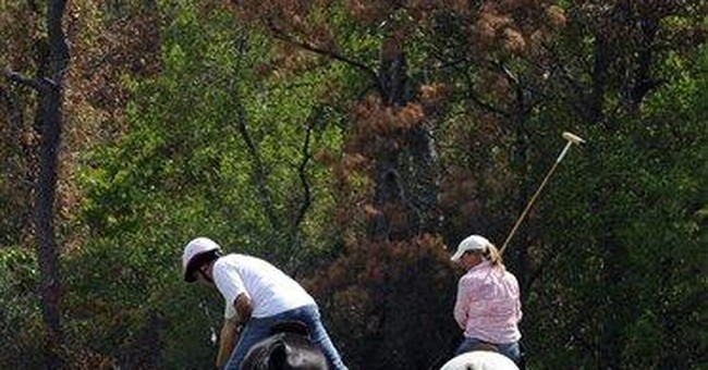 Dead trees will mar Texas landscape for years