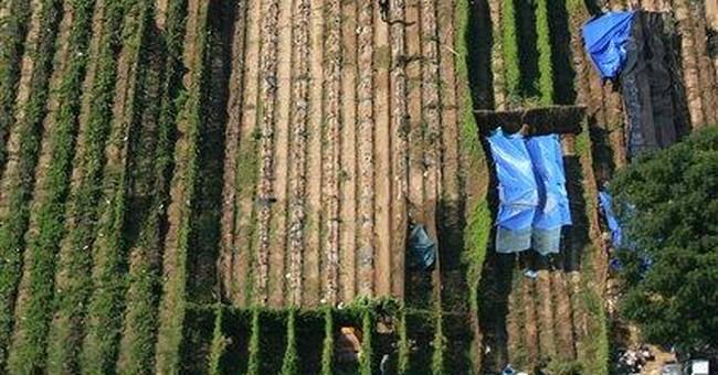 AP Enterprise: Pot growers move to Calif. farms