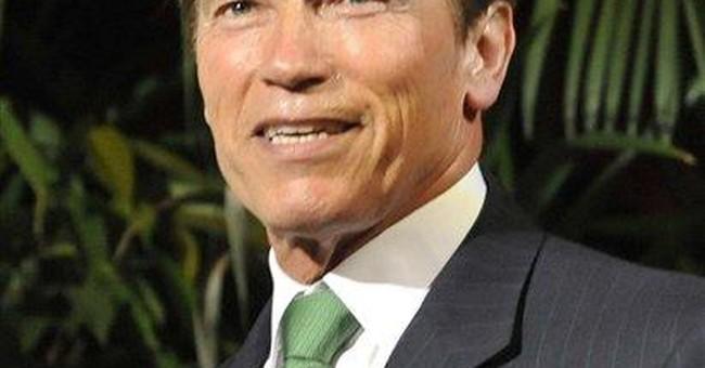 Schwarzenegger back on movie set
