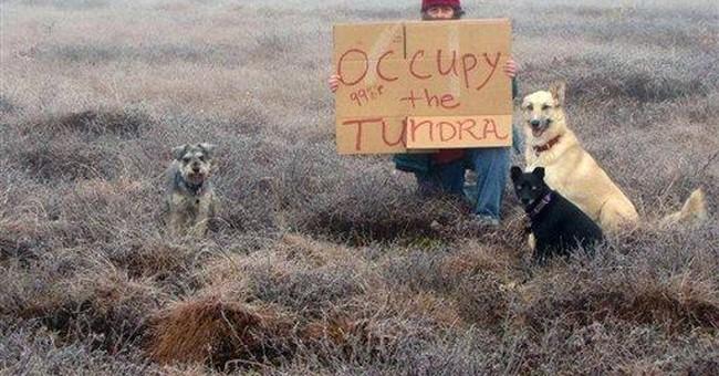 Alaska woman takes stand with 'Occupy the Tundra'