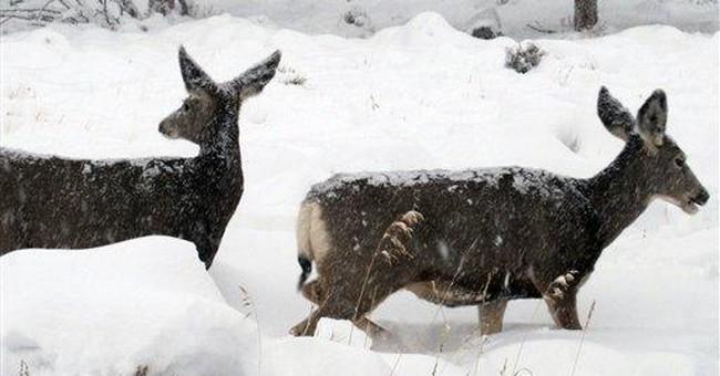 Denver gets season's first snow as Obama visits