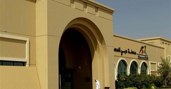 Ahoy Dubai: Gulf city to expand cruise ship port