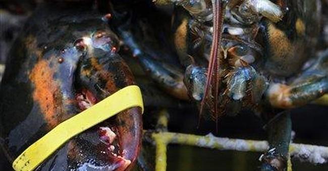 Conn. lobstermen seek other work as stocks dwindle