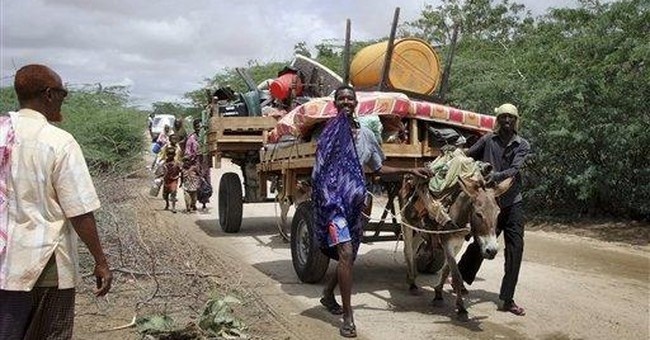 Kenya army tweets: Don't sell donkeys to militants
