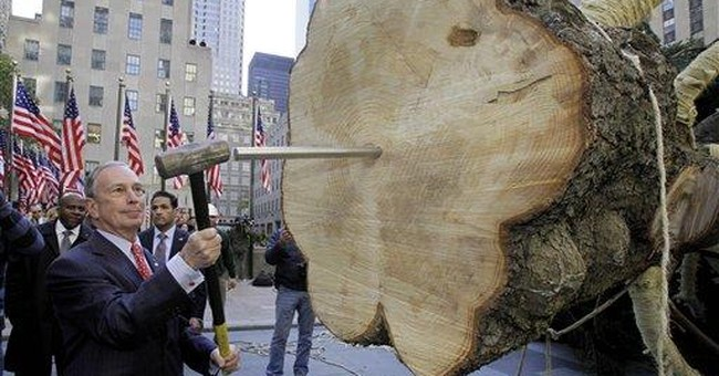 Big Pennsylvania Christmas tree is hoisted in NYC