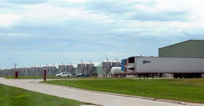 APNewsBreak: Iowa egg farm pays salmonella victims