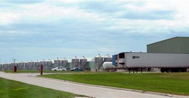 APNewsBreak: Iowa egg farm pays salmonella victims