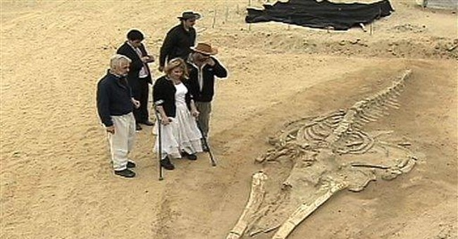 Whales in the desert: Fossil bonanza poses mystery
