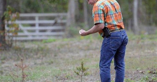 Drought puts damper on tree farmers' Christmas