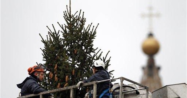 Tree? Check. Vatican gears up for Christmas
